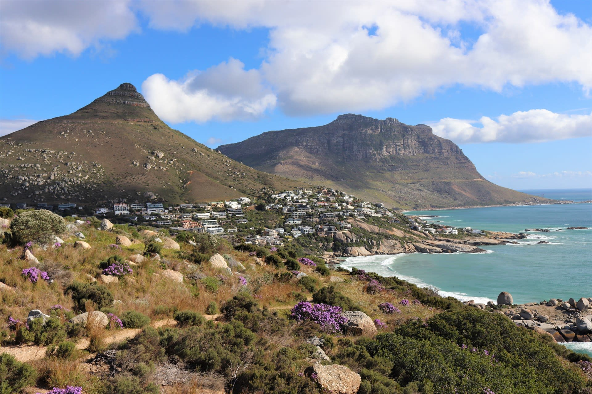 Whale Watch Tour from Cape Town with Transfers