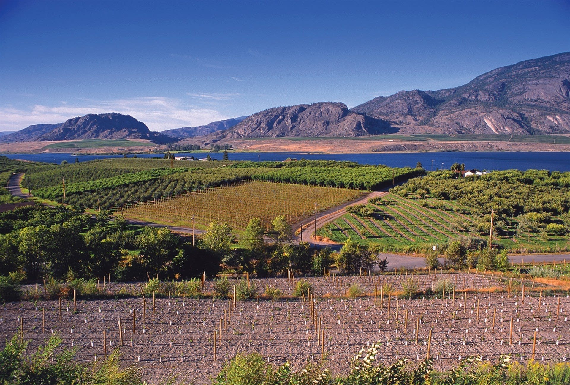 British Columbia: Mountains, Wineries & Ranches