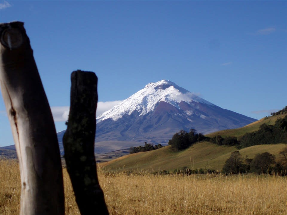 Cotopaxi National Park with Lunch