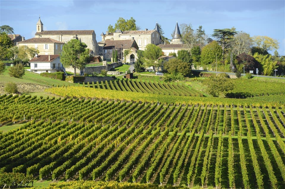 Bordeaux's Sumptuous Wines