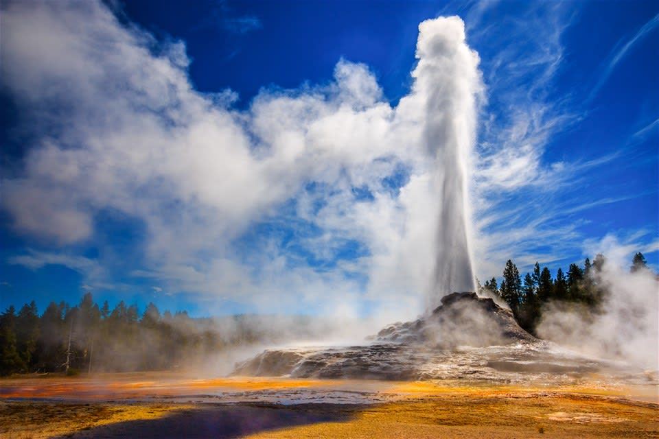 Yellowstone & The Wild West