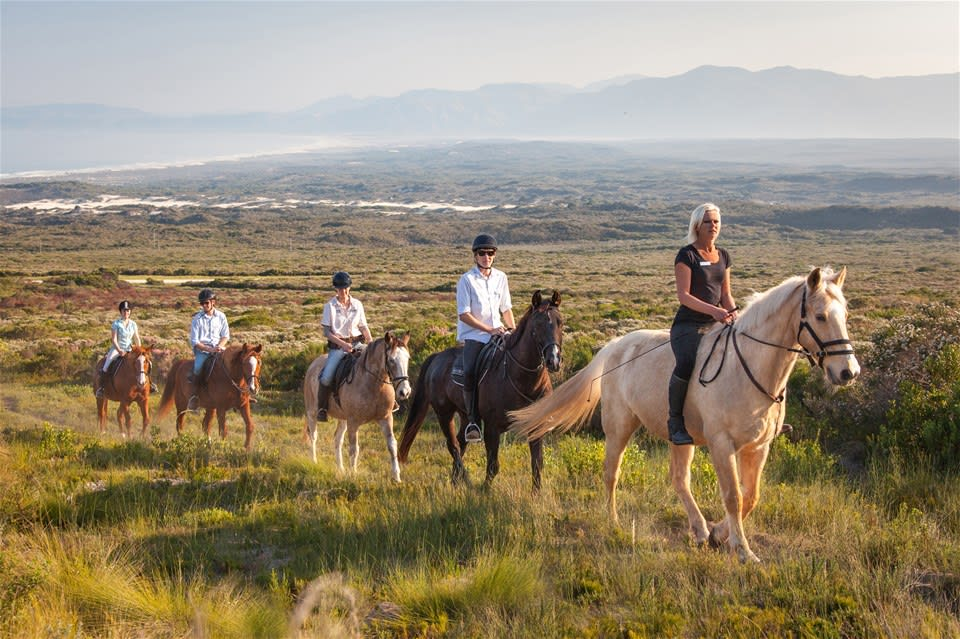 Nature & Gourmet Retreats of the Western Cape - Chauffeured Fly Drive