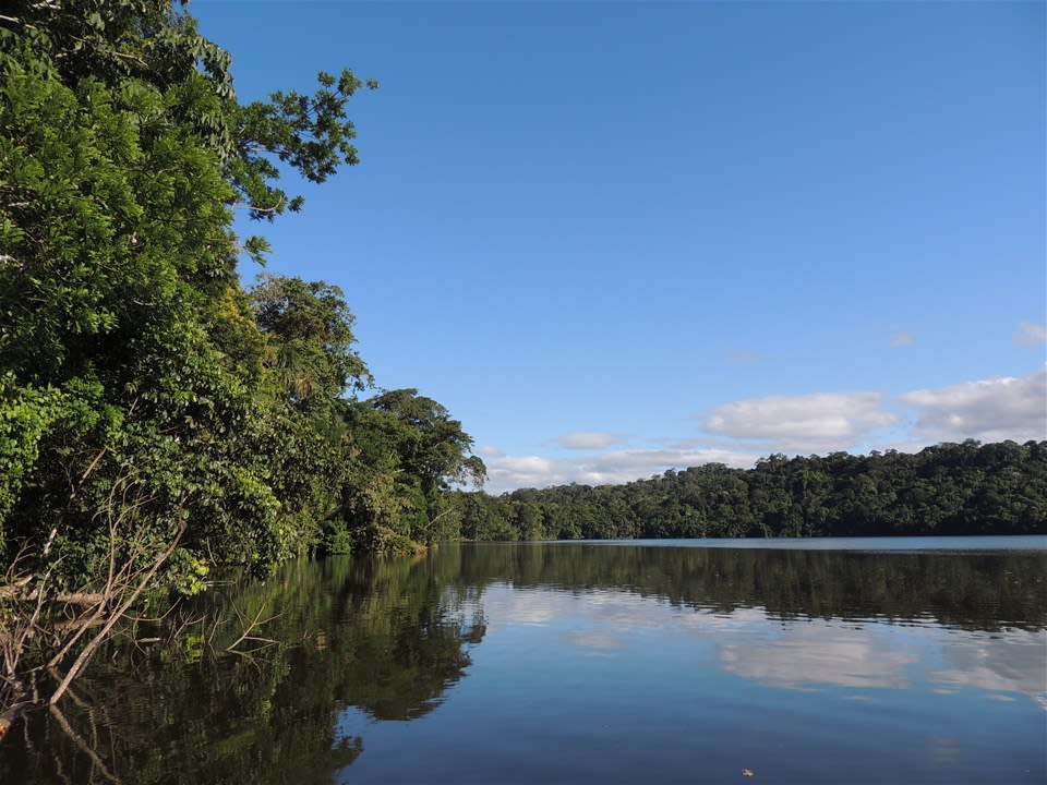 Bolivian Amazon Extension