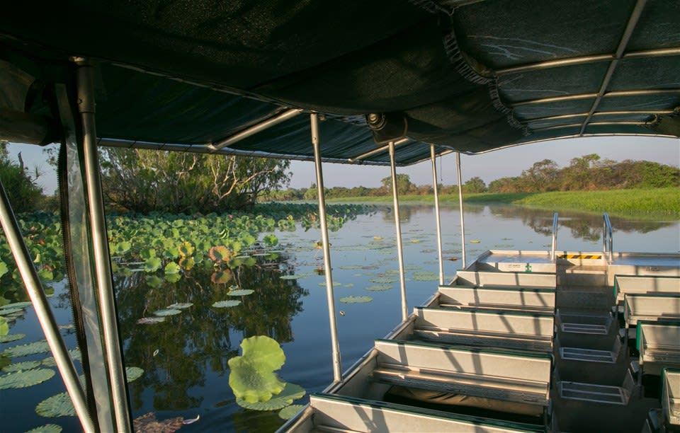 Mary River Wetlands Cruise
