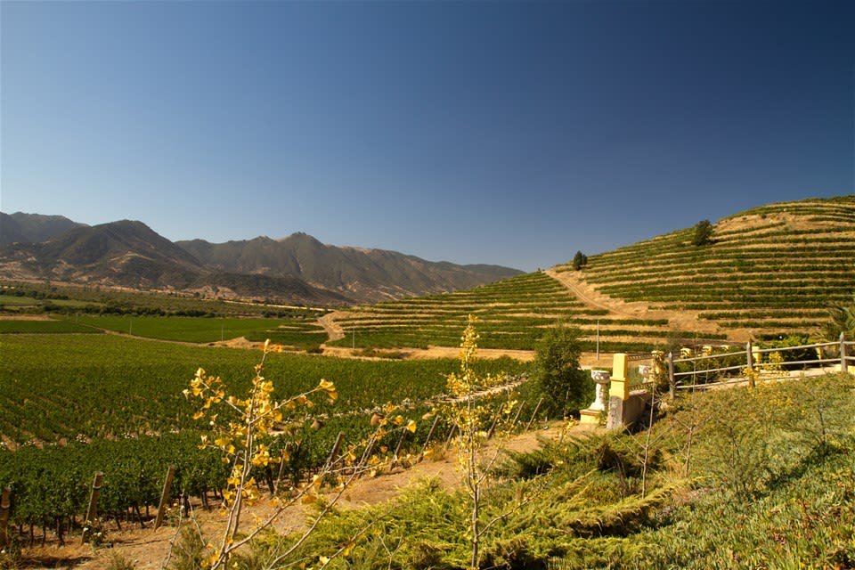 Chile Winelands Extension