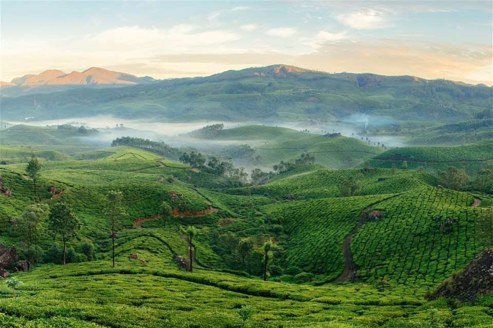 Misty Mountains and Beautiful Backwaters
