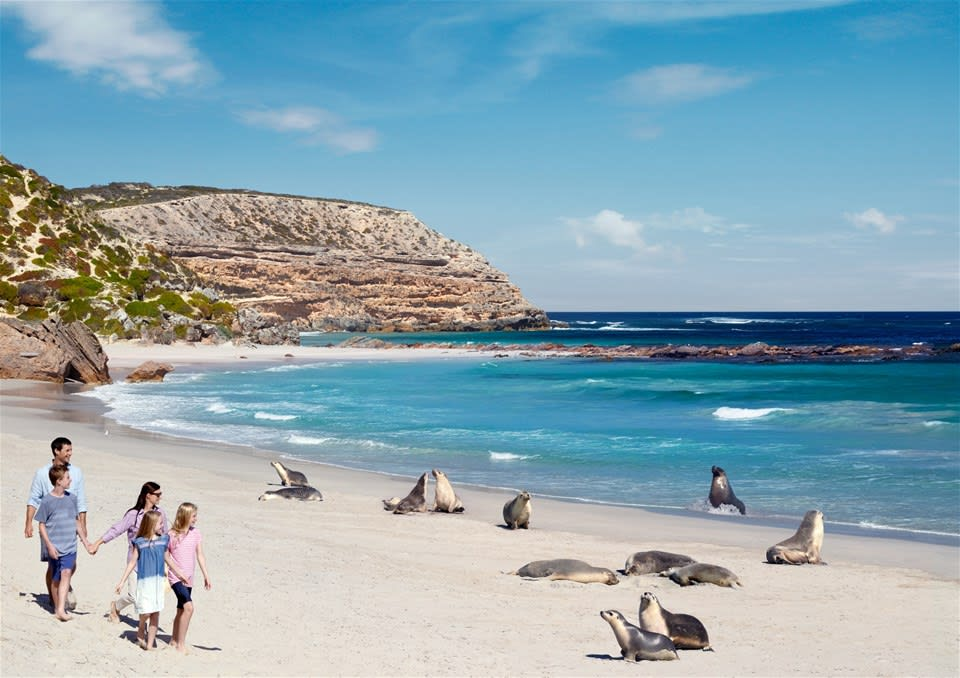 Wildlife & Wonders of Southern Australia