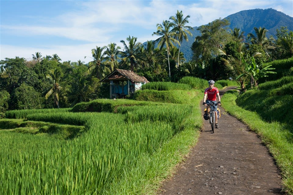 Bali Family Holiday for Teenagers