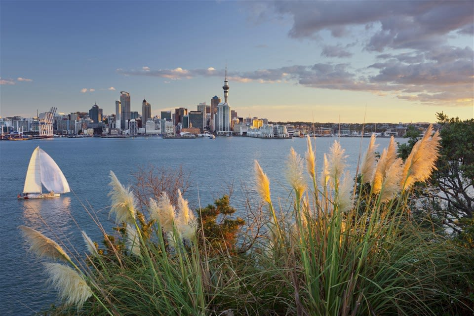 Auckland & The Tropical North