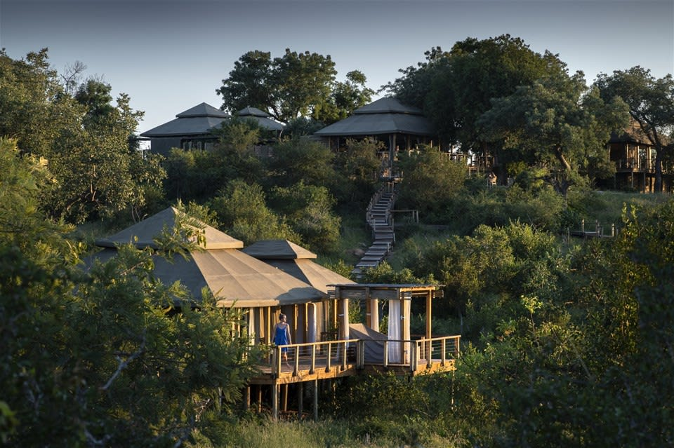 Ultimate Tented Kruger Experience