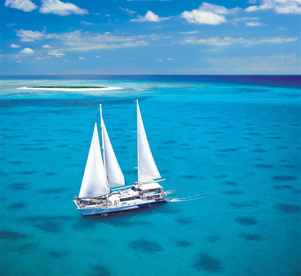 Michaelmas Cay Catamaran Cruise