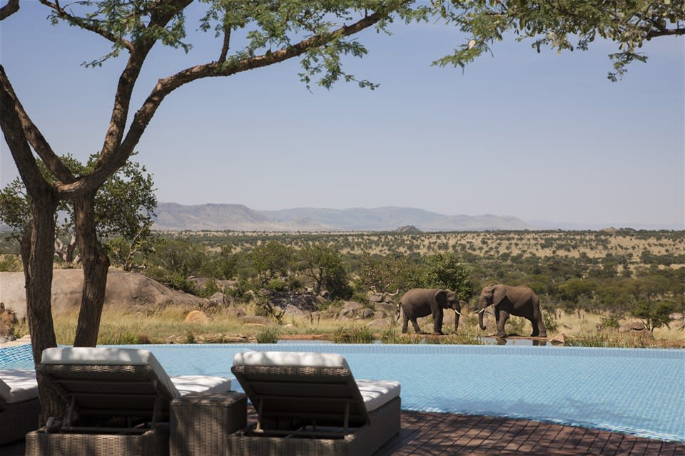 Absolute Luxury East Africa