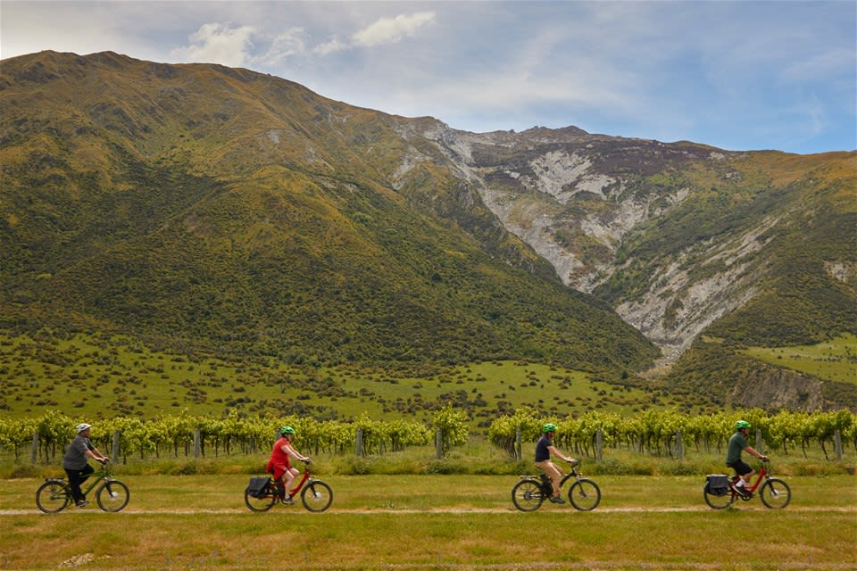 Queenstown Guided Wine Tour by E-Bike