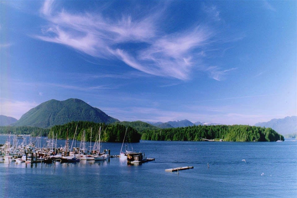 Vancouver Island's Bears & Whales - Motorhome Holiday