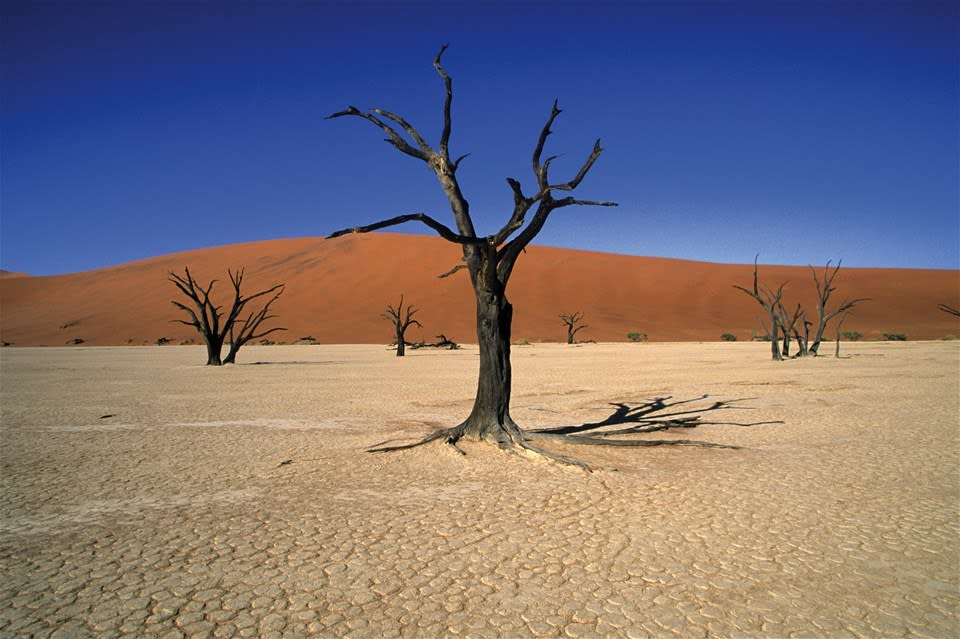 Journey through Namibia