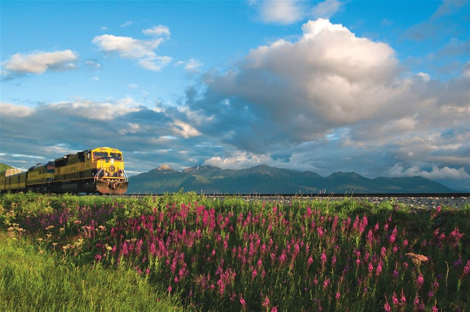 The Coastal Classic train passing through beautful alpine meadows on a picturesque Alaskan rail journey