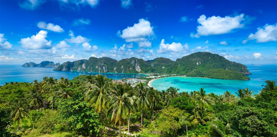 aerial view of palm trees and cove in thailand