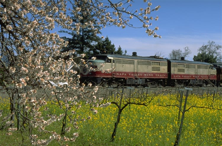 Napa Valley Wine Train with Gourmet Lunch - 1st seating