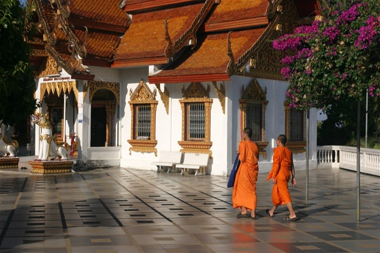 A Morning with the Monks