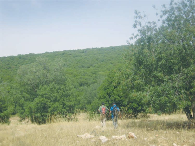 Trekking at Ajloun Nature Reserve